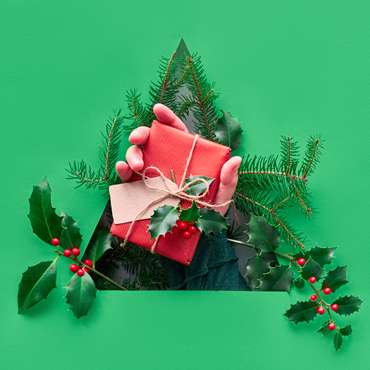 Have a Merry Sustainable Christmas - Save the Earth and your Wallet too!